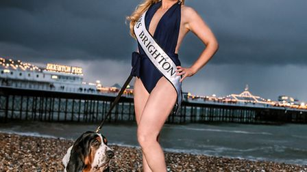 Victoria Melody's Major Tom sees her and basset hound exploring championship dog showing and beauty