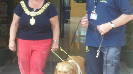 Blindfolded mayor Jan Garfield of Felixstowe puts her trust into a guide dog, monitored by instructo
