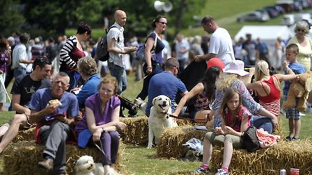 Man's best friend had their day during Suffolk Dog Day at Helmingham Hall.