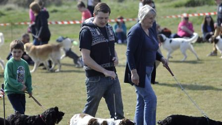 Dog owners on the peninsula are being warned over the virus