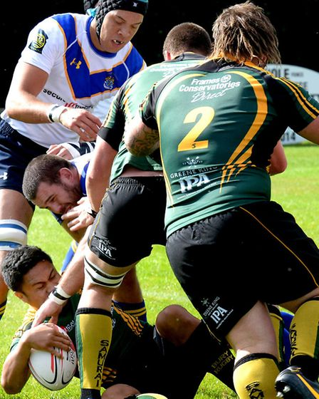 Bury St Edmunds Rugby Club host Old Elthamians at the Haberden in their first National League 3 fixt