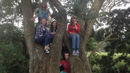 Young Farmers having fun at Suffolk YFC Junior Campout at Baylham House Rare Breeds this year