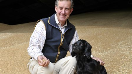 Robert Rous kneels in a pile of wheat at Dennington Hall Farm with his Cocker Spaniel Alvie.