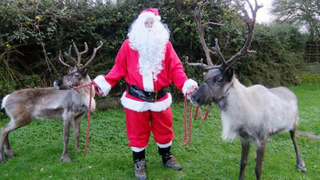 The Suffolk Winter Fair comes to Trinity Park this weekend