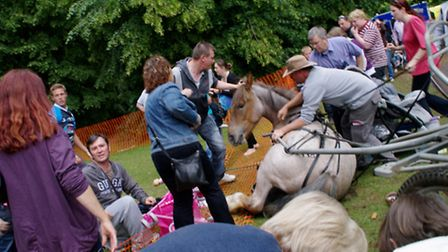 """This is the devastating moment a country fair descended into """"carnage"""" when a horse bolted with its"""