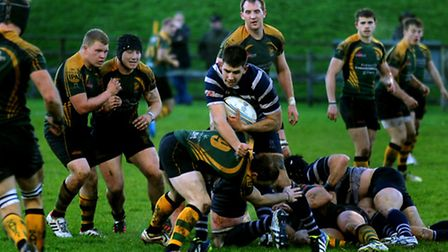 Bury St Edmunds Rugby Club entertains Westcombe Park at The Haberden on Saturday Scrum half Cody Ma