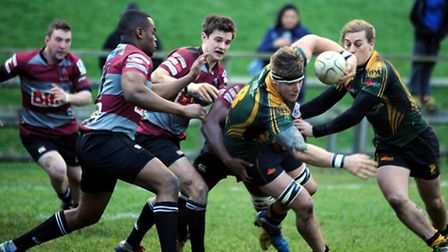 Bury St Edmunds Rugby Club host Barking at the Haberden on Saturday and hand out a 72 - 0 drubbing