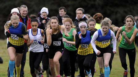 The start of the Under-15 girls race in the Essex Cross Country Championships at Hilly Fields in Col