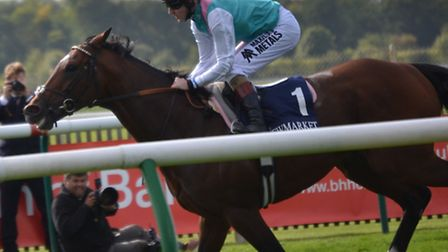 Frankel, trained by the late Sir Henry Cecil, retired from the track in October 2012 after taking hi