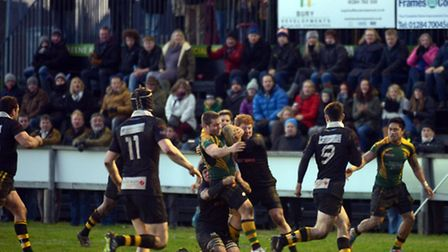 Bury St Edmunds RFC entertain Tring at The Haberden and are narrowly defeated after a late try by th