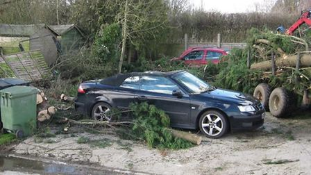 Two brothers had a lucky escape after a tree fell on their cars at The Red Lion in Belchamp Otten. P
