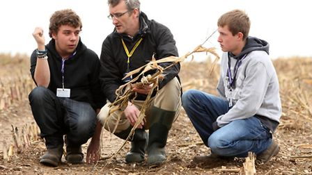 Anthony Wilson, programme area leader for agriculture, with two EDGE apprentices at Easton & Otley C