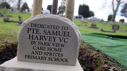 The mayor of Ipswich, Hamil Clarke, plants a tree as a memorial to Samuel Harvey VC in Ipswich Old C