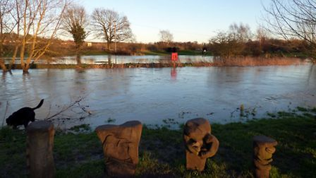 When the River Gipping floods it spills into Needham Lake leaving it in flood until it eventually dr
