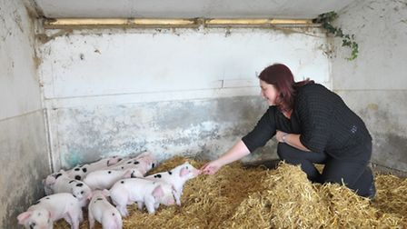 Teresa with some of their new piglets that will soon be back on their land.