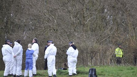 Police forensic investigators wait while police dogs brought from the Met in London search the woode