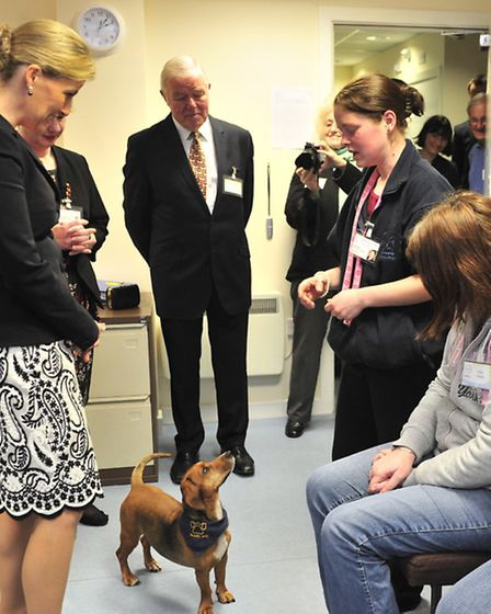 The Countess of Wessex visits Headway, Ipswich The Countess meets Brainy Dogs