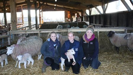 Katie Evans (centre) with second year Agriculture degree students Jordan Shynn, from Maldon, (right)