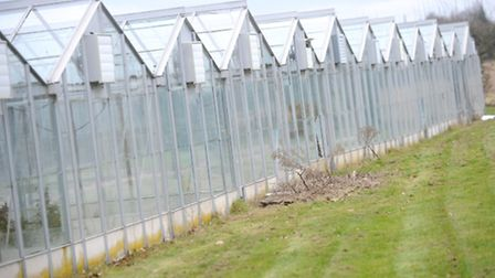 The redundant glass houses used for growing tomatoes was denied planning permission to transform the