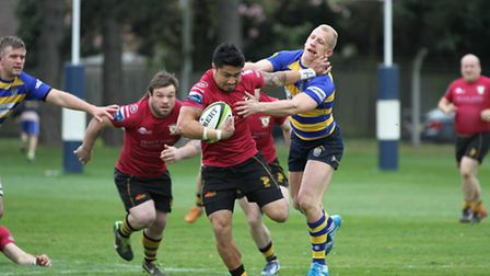 Tanimo Samoa rampages through at Old Elthamians