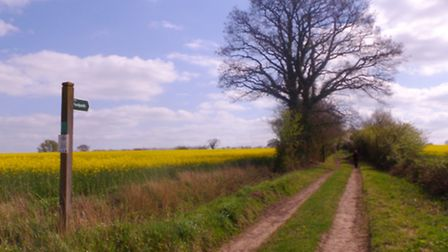 Follow a route that straddles the Suffolk/Norfolk border