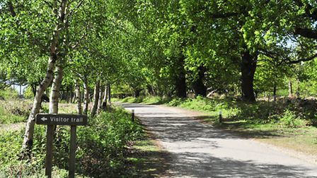 The entrance to the Minsmere nature reserve.