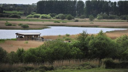 The new studio built at Minsmere for the Springwatch show