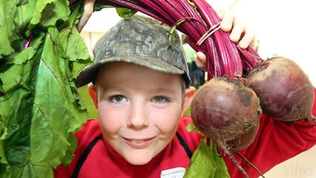 A participant at last year's Essex Schools Food and Farming Day