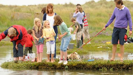 Crabbing is a great - and virtually cost-free - way to spend a few hours