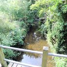 The Stout Brook in East Town Park, Haverhill has been polluted by a nearby sewage system.