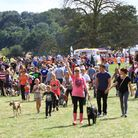 Essex Dog Day proved to be a big hit in 2013
