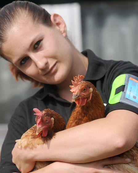 Taz Clarke is a bouncer by night, and a chicken re-homer by day. Taz is pictured at home in Fornham.