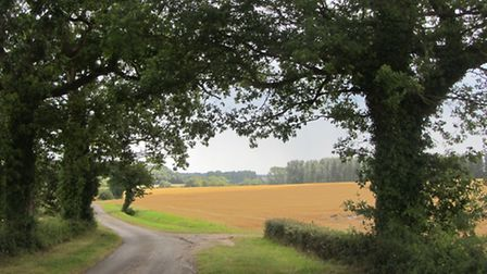 Picturesque countryside view on this walk from Framlingham