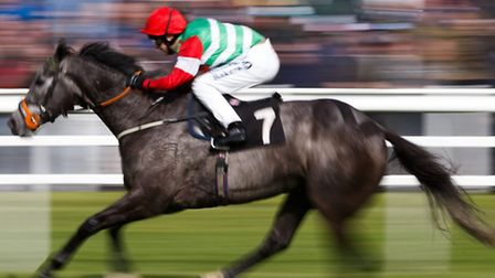 Dark Emerald, pictured winning at Lingfield, won the finale at Newmarket on Saturday at 10/1.