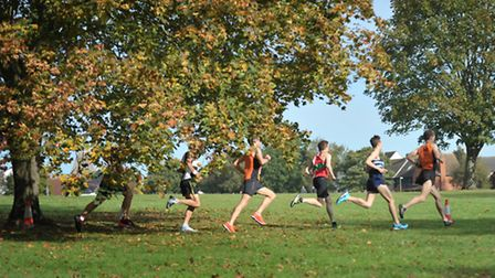 Runners took part in the Martlesham 10K over the weekend.