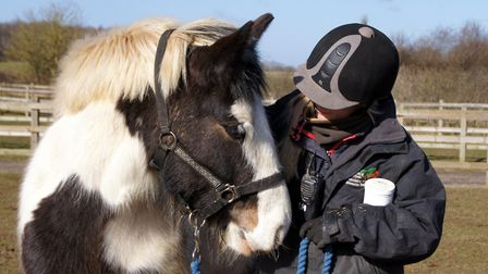 Redwings is looking after more than 1,500 animals across the festive period. Picture. Redwings Horse