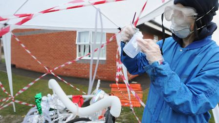 Alien crash lands at Boxted St Peter's Primary School as part of science week