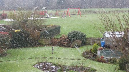Peter Bash took this image of falling snow through his window this morning.