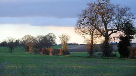 The site on the outskirts of East Bergholt where the proposed development for 144 houses would be bu