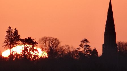 Silhouettes captured in and around Woolpit - Pamela Bidwell