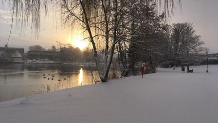 Diss Park in the snow. Picture: Sonia Elvin