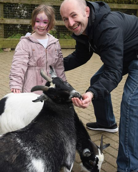 The 50th anniversary of Banham Zoo. Maisie Brown and her dad, Tim, feed the goats in the Farm Barn.