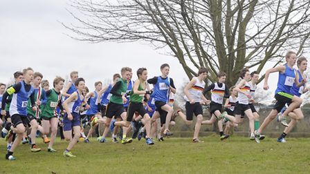 Junior boys take off for a their race at the Anglian Counties Cross Country Championships at The Roy