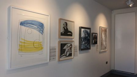 An exhibition featuring internationally renowned female artists in The Corn Hall Diss. Picture: Sabr