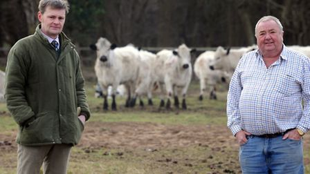 Eldon Farm in Holywell Row is launching its new cattle market next week. Fabian Eagle (left) and Bri