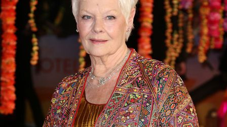 The Second Best Exotic Marigold Hotel premiere