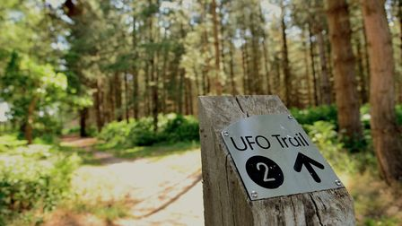 There is now a UFO trail at Rendlesham Forest in Suffolk. Picture: Simon Parker