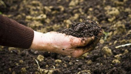 Testing the soil: Otley is set to host an event about soil and water management today.