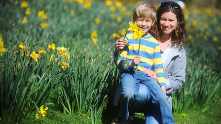 Rachel Cawston and her son Oliver (Cawston) enjoying a day out in Nowton Park, Bury St Edmunds.
