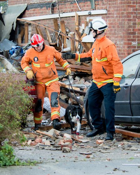 Darcy the search and rescue dog helping firefighters search for people following an explosion in Cla
